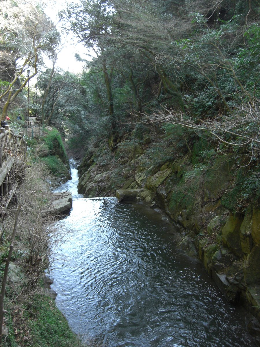The river from the falls