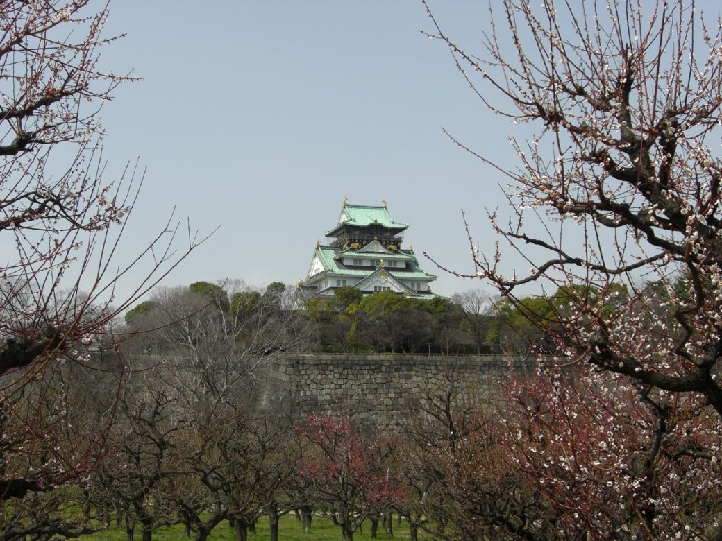 Through the Cherry Blossom in the Plum Garden (Cherry Blossom is a very big thing here)