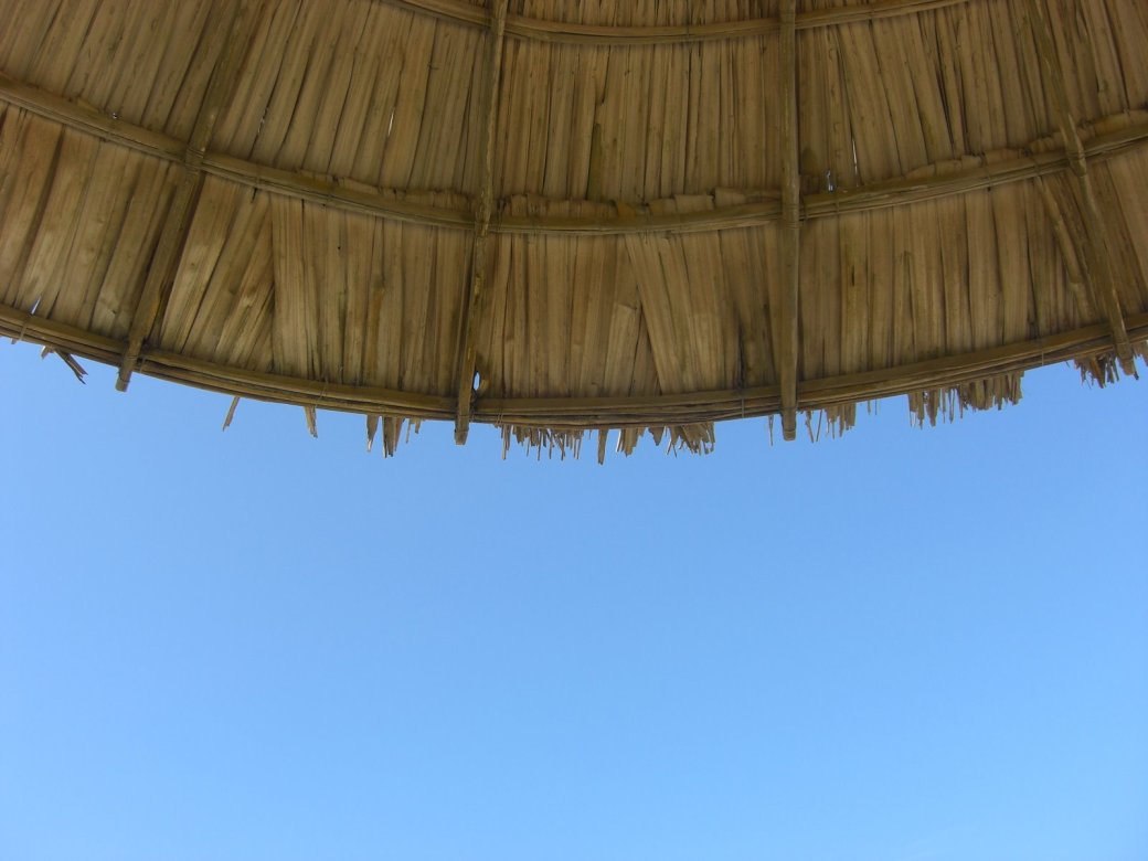 Random Art Shot. The parasol did not help me and I got burned bad! Even under my shorts?