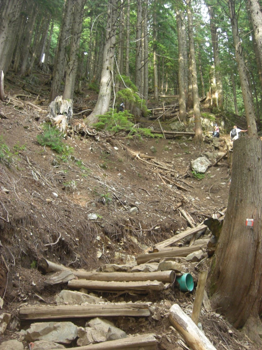 Its a 2,830 steps up the side of Grouse Mountain. You gain 853m over 2.9km. That's an average incline of 30 degrees.