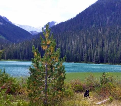 Jesse at Lower Lake